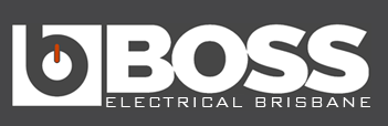 BOSS Website Logo
